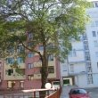 rent an apartment in Burgas